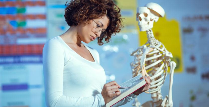 anatomistuderende bliver undervist i anatomi og fysiologi på anatomikursus