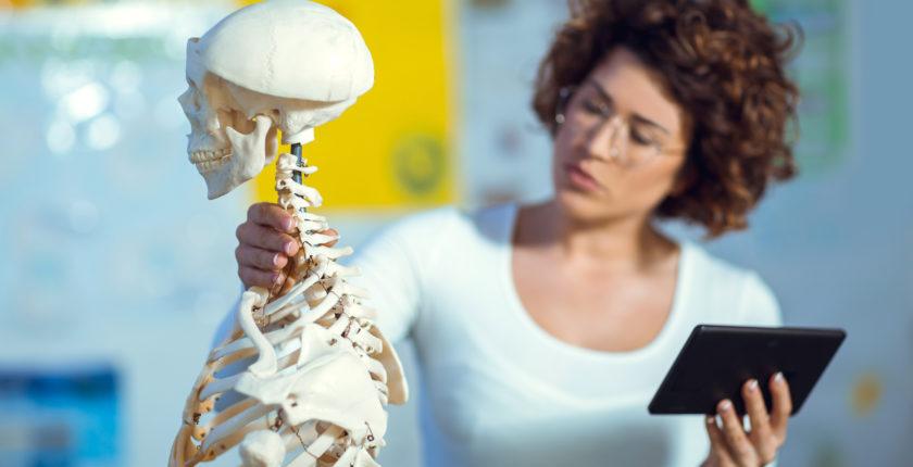 anatomistuderende studerer anatomi, fysiologi, sygdomslære og farmakologi